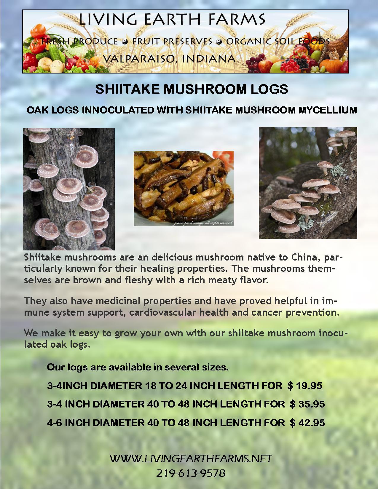 shiitake mushroom logs Shiitake Mushrooms