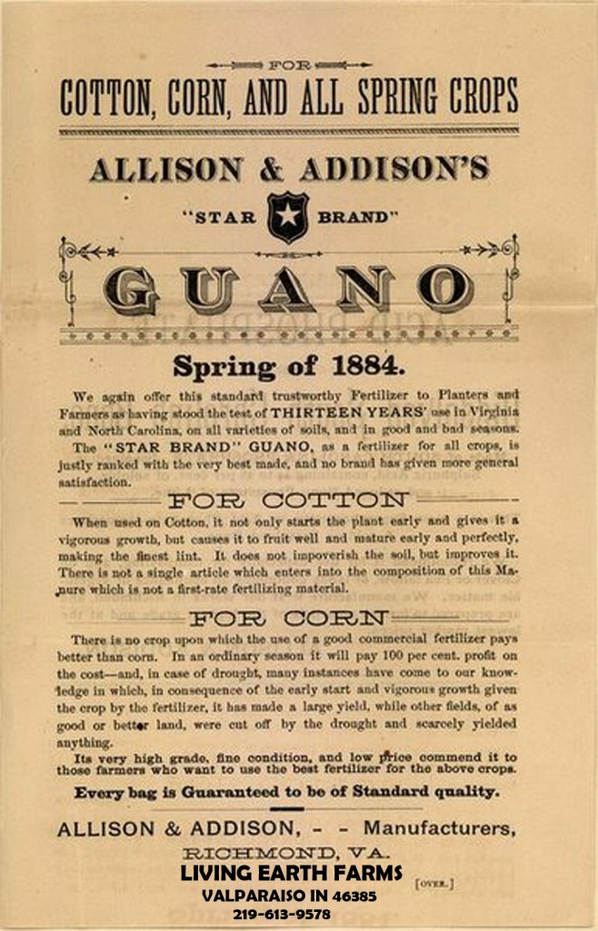 385px Guano advertisement 1884 copy 658x1024 Organic Soil Foods